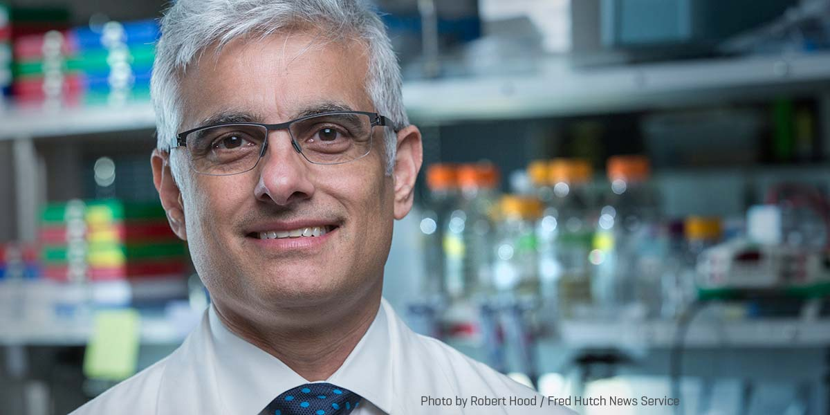 Experimental drug makes some pancreatic cancers more