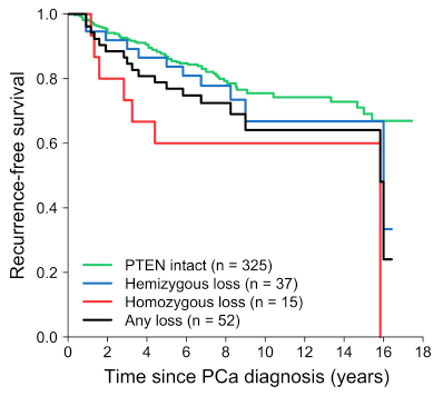Prostate cancer and the power of PTEN