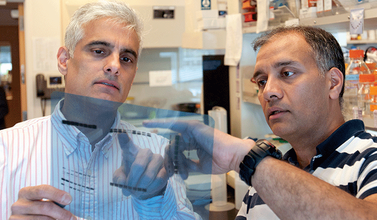 Dr. Sunil Hingorani reviews DNA fragments