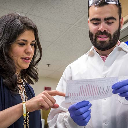 Sita Kugel looks at experiment results with Ben Doron in the Kugel Lab