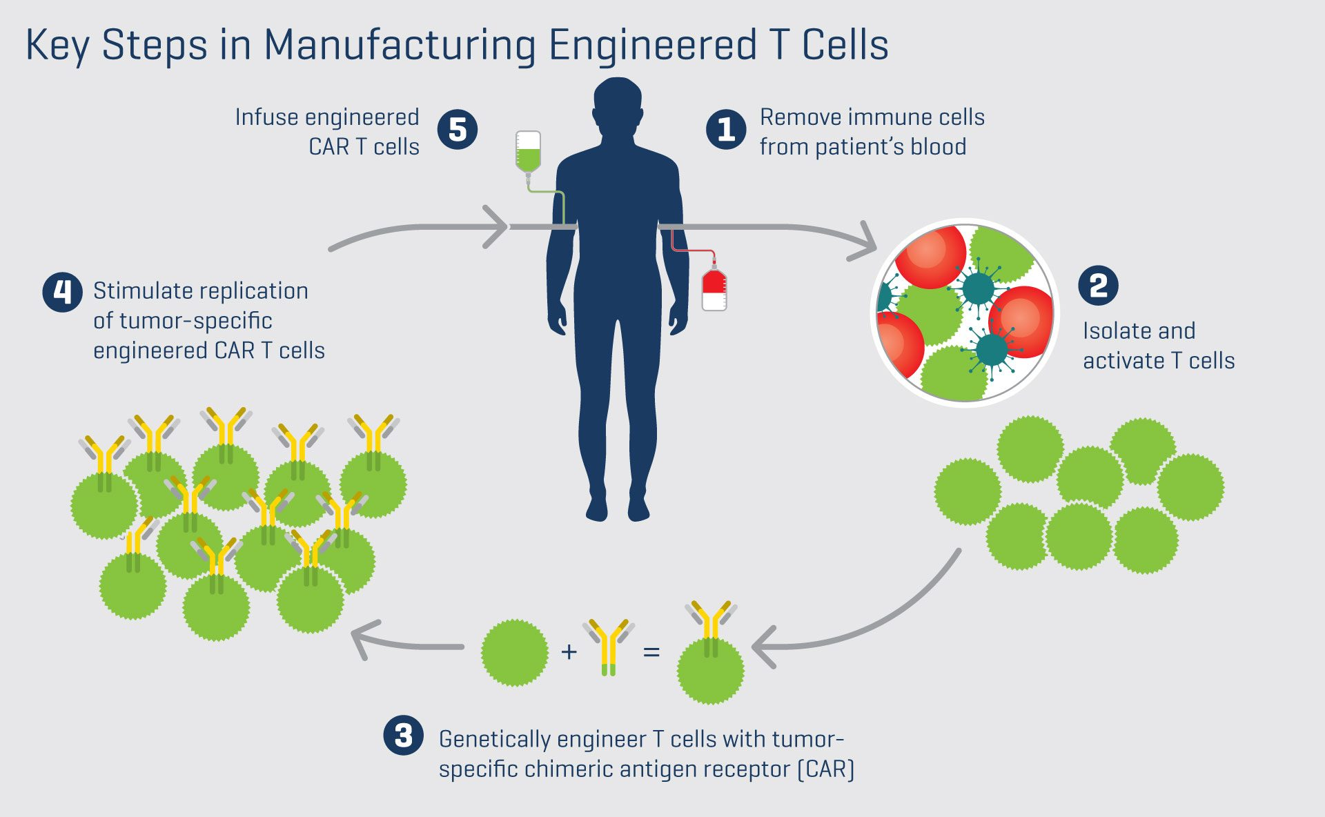 Key steps of manufacturing engineered T cells