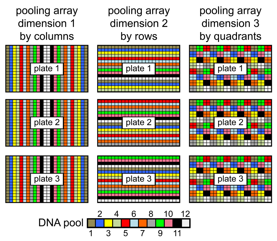 Combinatorial sample pooling assigns rare DNA variants to known ...
